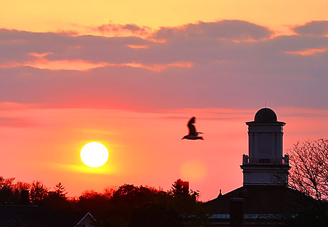 oldcourt_sunset02.jpg
