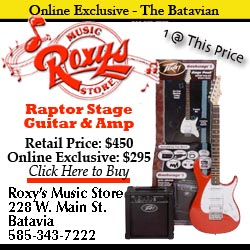 roxys_music_raptor_guitar.jpg