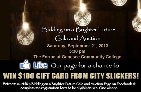 Contest Like Bidding On A Brighter Future Gala And Auction Facebook Page The Batavian