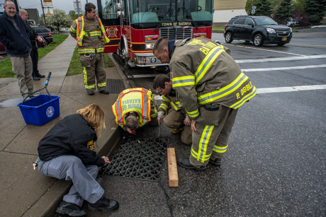 A duck in need: DC first responders rescue ducklings from storm drain