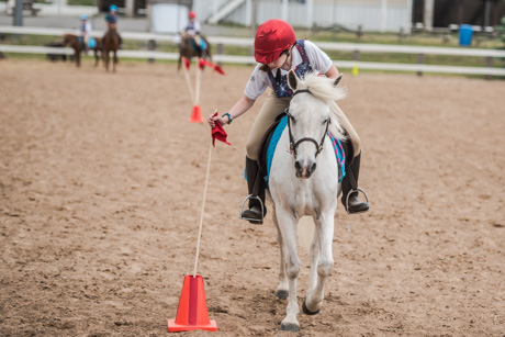 ponycontestjune22018.jpg
